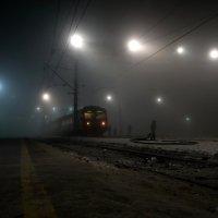 Февральский туман :: Валерий Чепкасов