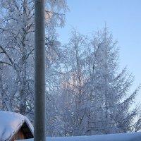 Зима. Мороз :: Cветёлка ***