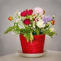 Цветы :: Andrei Naronski