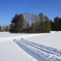 Снежными дорогами. :: Ирина Королева