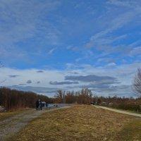 Погожий февральский день. :: Galina Dzubina