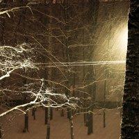 Ночной снегопад :: Валерий Смирнов