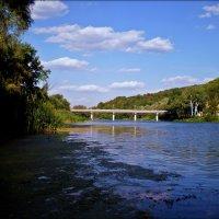 Мост :: Татьяна Пальчикова