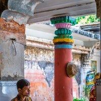 Где-то в Индии :: Сергей Станкевич