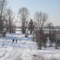 зимний парк :: Slava