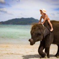 вверхом на слонике! :: Нимфа N