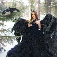 Черная птица :: Ольга Афонина