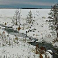 Берёзовка речка... :: Владимир Хиль