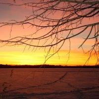 Зимний закат :: Наталия Зыбайло