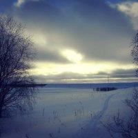 Февральская лыжня :: Николай Туркин