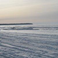 Побережье Финского залива :: Маера Урусова