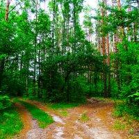 Две дороги а итог один :: Юрий Плющев