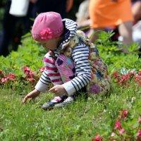 цветочек среди цветочков :: Олег Лукьянов