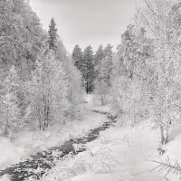 Зимняя белизна :: vladimir Bormotov