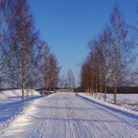 По дороге снежной... :: Ирина Нафаня