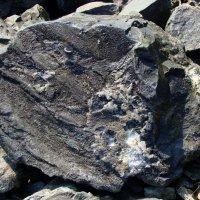 расколовшийся камень окаменелой лавы :: Валентина. .