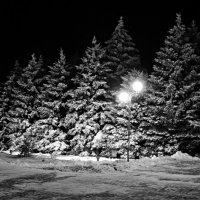Зимний вечер. :: владимир
