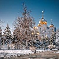 Краснодар зимний :: Ирина Христенко