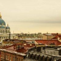 Петербургские крыши :: Валерий Смирнов