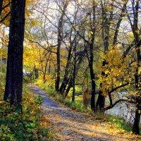 Осенняя дорожка у реки :: Leonid Tabakov