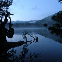 Утро на горном озере :: Андрей