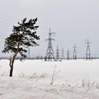 Зима, ветер или один среди железа. :: Александр Кокарев