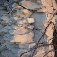 Взгляд скалы :: Булаткина Светлана