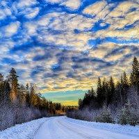 утро на дороге :: Александр Преображенский