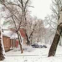 Снегопад :: Константин Бобинский