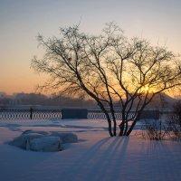 """""""Розовый снег, как чудо из сказки. Таинственный свет, снежинок в нём пляски..."""" :: Надежда"""