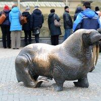 Моковский Зоопарк :: Олег Савин