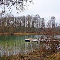 Февральский день на озере... :: Galina Dzubina