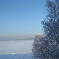 Утро на пруду :: Валерий A.