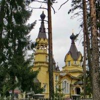 Церковь Петра и Павла в Вырице :: Елена Павлова (Смолова)