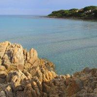 Море...Оно дарует мягкость каждым всплеском, преподавая нежности урок... :: Елена Ярова