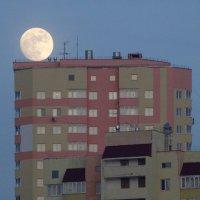 Мечта лунатика :: Валерий Чепкасов