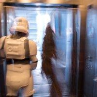 Стою себе в лифте... :: Anna Shevtsova