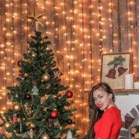 Новый год :: Камилла Демидова