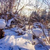 Зима в Иркутске. :: Rafael