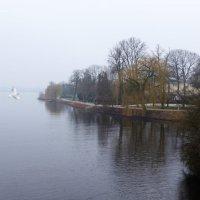 Туманным утром на исходе зимы. Одинокая чайка над озером :: Nina Yudicheva