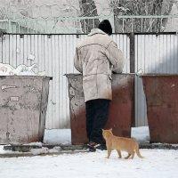 Бездомная жизнь :: Владимир Сотман
