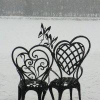 Великие Луки. Кресла влюблённых... :: Владимир Павлов