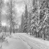 Зимняя дорога :: vladimir Bormotov