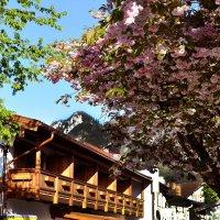 Весна в Обераммергау :: Надежда Лаптева