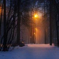 снегопад :: alexzonder