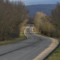 Дорога в Байдарской долине :: Игорь Кузьмин