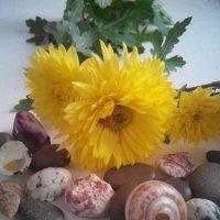 flowers :: ~ Backstage ~ N.
