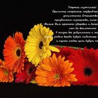 с праздником! :: Svetlana Galvez