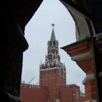 а  из  этого  окна  - башня Спасская  видна... :: Galina Leskova