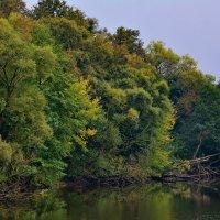 Есть в старом парке Графский пруд...... :: Paparazzi